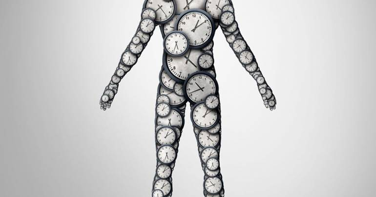 A BRIEF PRIMER ON CIRCADIAN BIOLOGY
