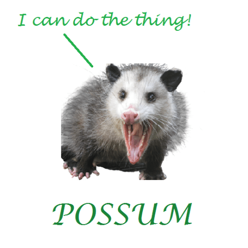 Possum An Ecological Nightmare New Zealand Geographic