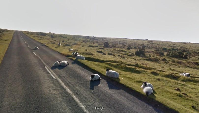 78d5cc4374785723d9c93ef326a5e77cf3a89d71 - As descobertas mais interessantes do Google Street View