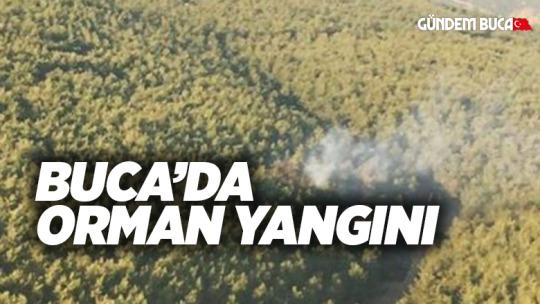 Buca'da Orman Yangını