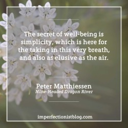 """#354 - """"The secret of well-being is simplicity, which is here for the taking in this very breath, and also as elusive as the air."""" -Peter Matthiessen (Nine-Headed Dragon River)"""