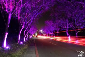 北市唯一「夜櫻」熱點!浮在百萬夜景上的北投櫻花隧道,春節假期最佳賞櫻復興三路攻略