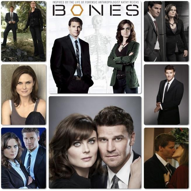 Emily Deschanel,Dr. Temperance 'Bones' Brennan,David Boreanaz,Special Agent Seeley Booth,Bones,Michaela Conlin,T.J.Thyne,Tamara Taylor,2005,ABD,40 Dak.,