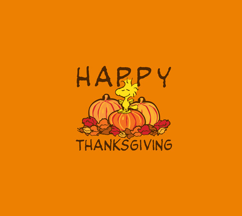 Image result for happy thanksgiving tumblr