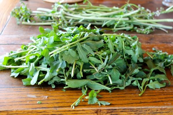 everlasting salad