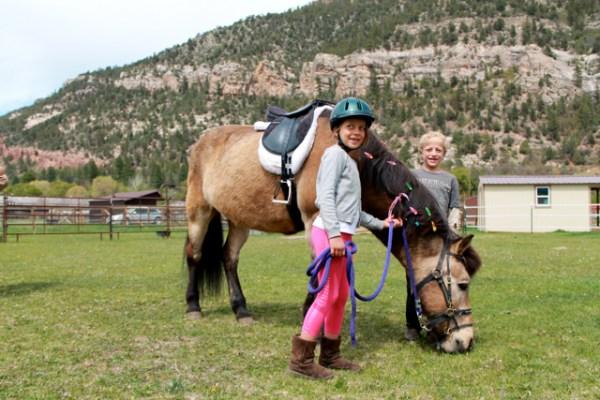 horse camp2