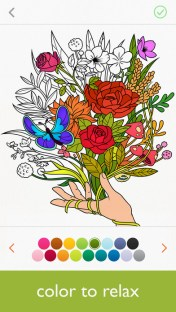 Colorfy_1