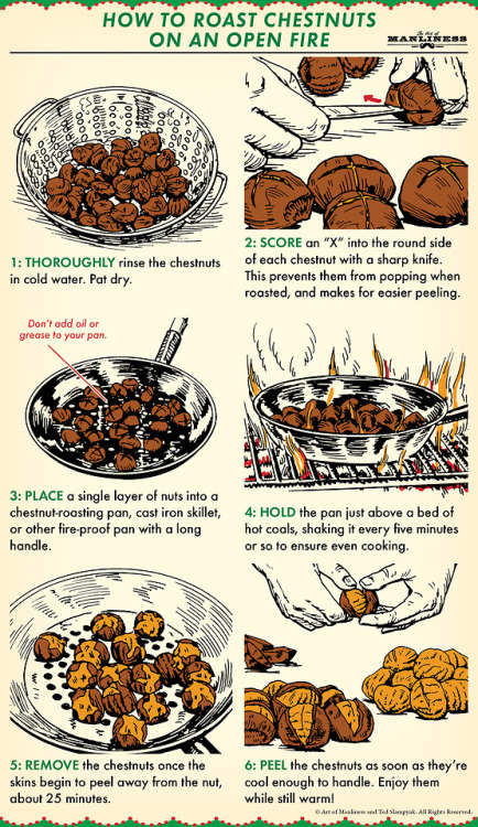 tumblr_pjdtygoJPp1qz6f9yo1_500 How to Roast Chestnuts Over an Open Fire Random
