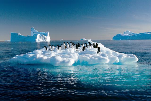 El tiempo se acaba: la Antártida registra una temperatura récord de 18,3ºC