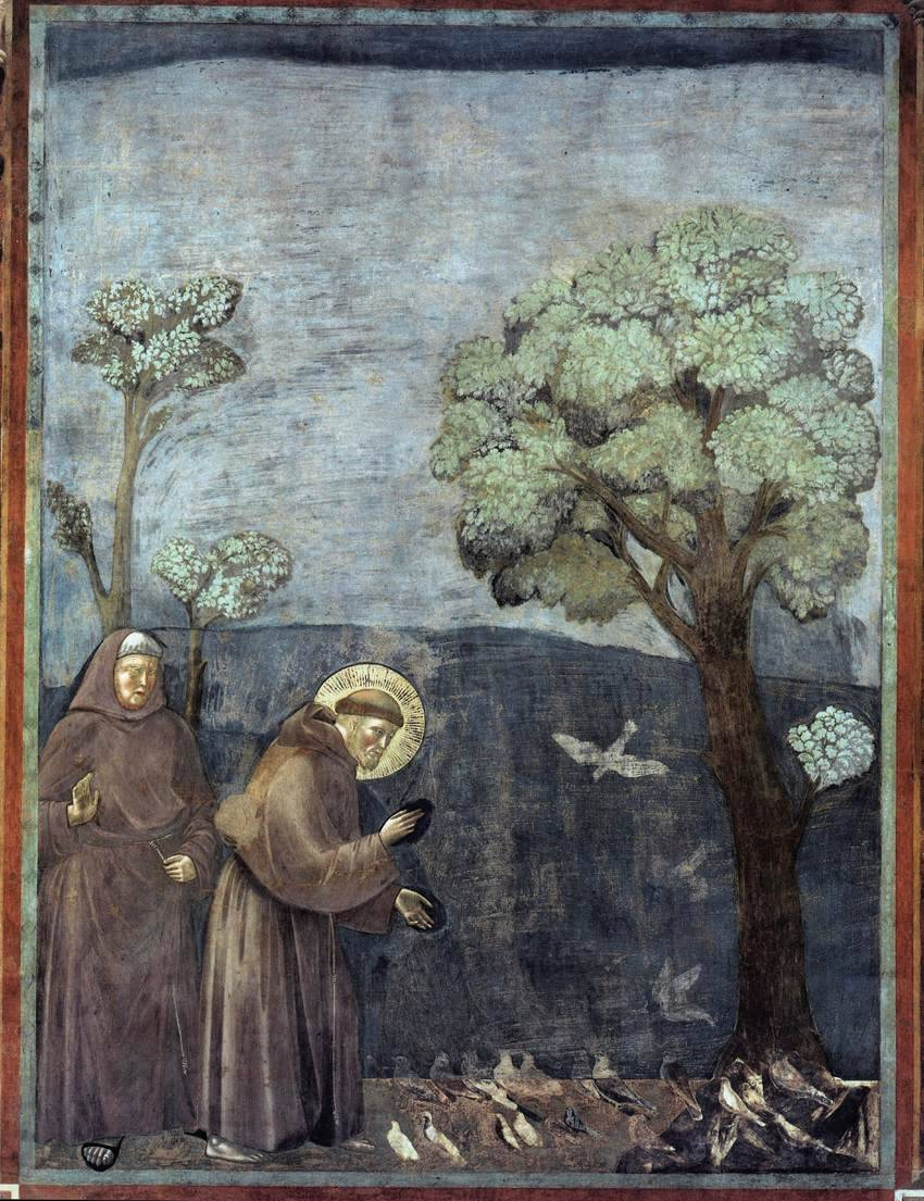 """conversationswiththelight: """" Giotto, St Francis Preaching to the Birds """""""