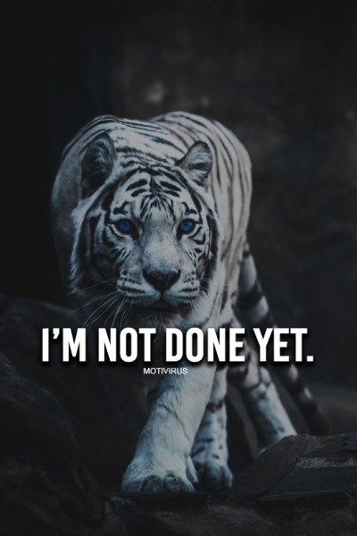 Strength Quotes About Tigers Quotesgram