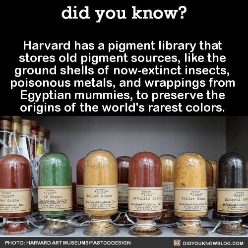 Harvard has a pigment library that stores old pigment sources, like the ground shells of now-extinct insects, poisonous metals, and wrappings from Egyptian mummies, to preserve the origins of the world's rarest colors. A few centuries ago, finding a...
