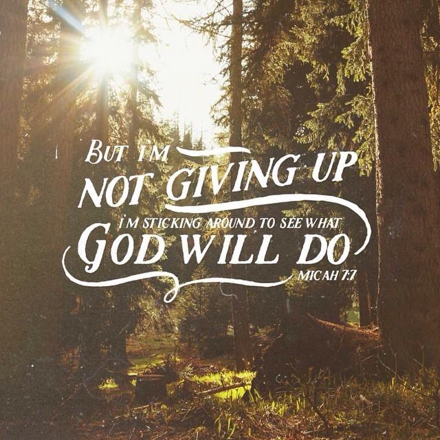 Image result for micah 7:7