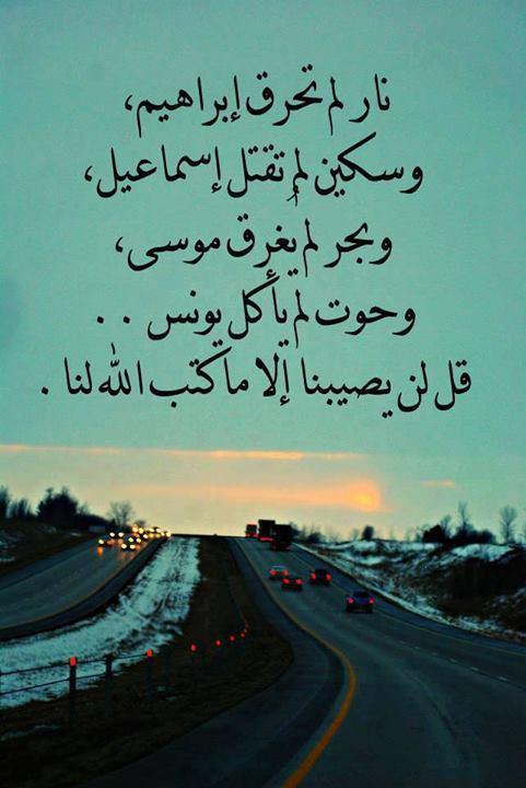 الأنين هو مولانا وعلى الله فليتوكل المؤمنون