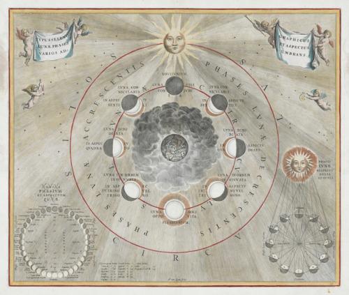 tumblr_pg3becYsL21qz6f9yo4_500 Maps to the Stars Random