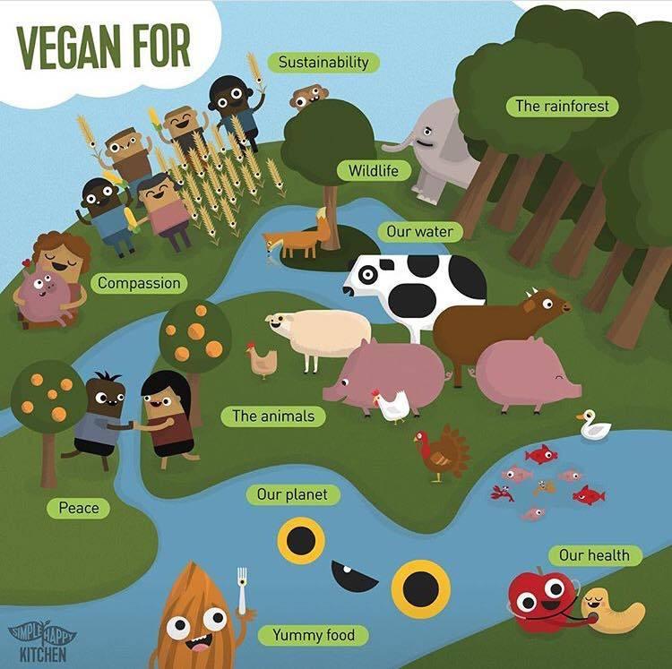 182 Best Funny Vegan Memes Images Vegan Memes Vegan Humor Vegan