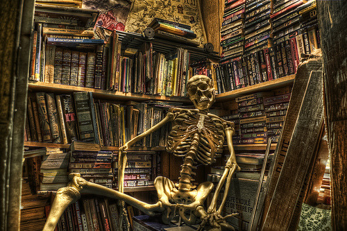 Image result for spooky libraries