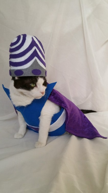 tumblr sex costume