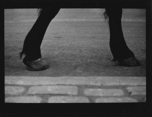 tumblr_pga65l5vYg1qz6f9yo10_500 Dark City, Giacomo Brunelli Random