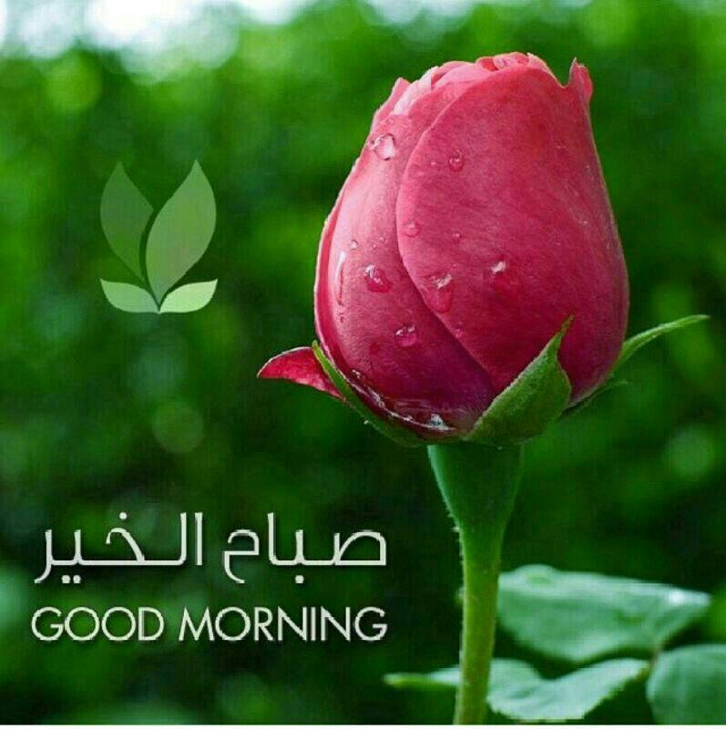 عبق الأخوة السلام عليكم ورحمة الله وبركاته عدنا والعود أحمد