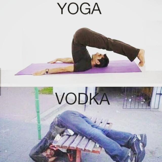 Web Developer Since The Beginning Yoga Vs Vodka Picoftheday