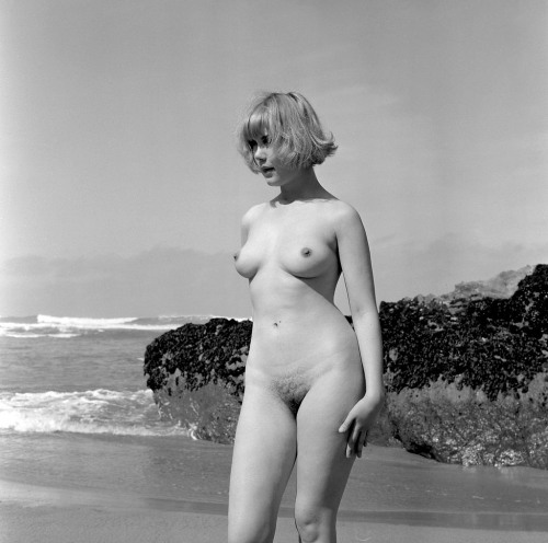 """around-here: """" Wendy James from an original negative, 1966 by Harrison Marks, Bedruthen beach, Cornwall, England. via /r/OldSchoolCoolNSFW http://ift.tt/1NRGr87 """" English flower."""