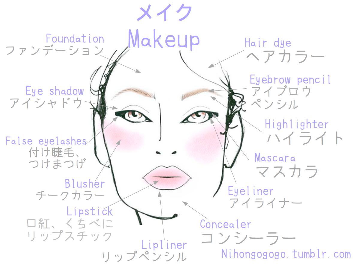 Makeup Vocabulary I Ve Checked This Vocabulary