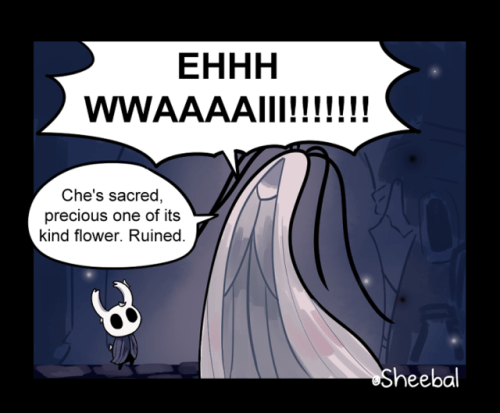 A Gift Hollow Knight Know Your Meme