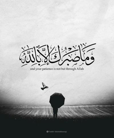 آيات قرآنية Tumblr