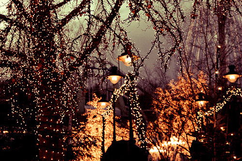 Christmas Lights Tumblr
