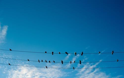 Image result for blue sky tumblr