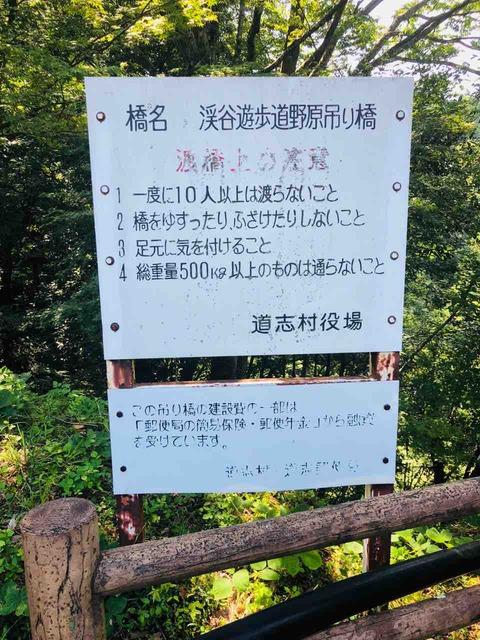 野原 吊り橋