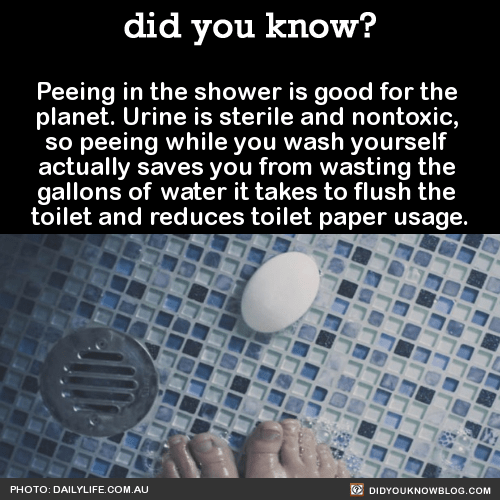 Peeing in the shower is good for the planet. Urine is sterile and nontoxic, so peeing while you wash yourself actually saves you from wasting the gallons of water it takes to flush the toilet and reduces toilet paper usage. Source