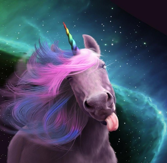 Image result for images for unicorns