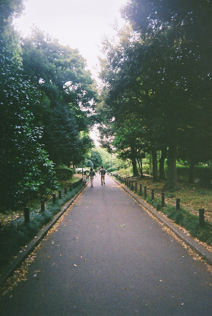 Image result for tumblr pic of outdoors