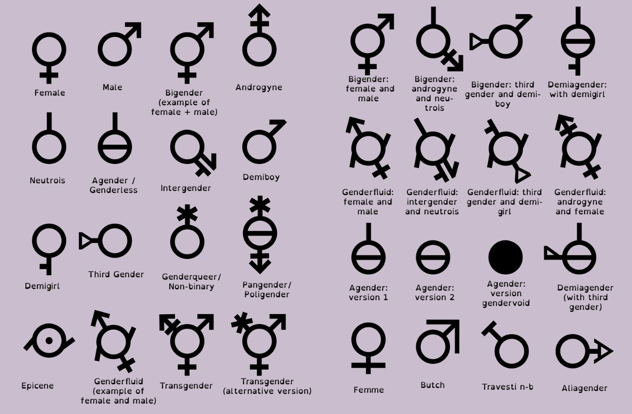 Image result for how many genders are there