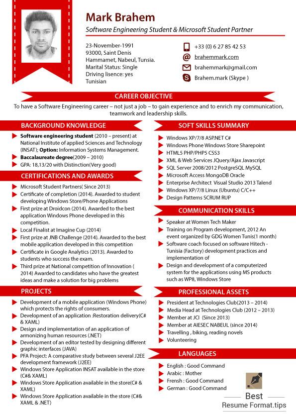 best resume format online cv 2016