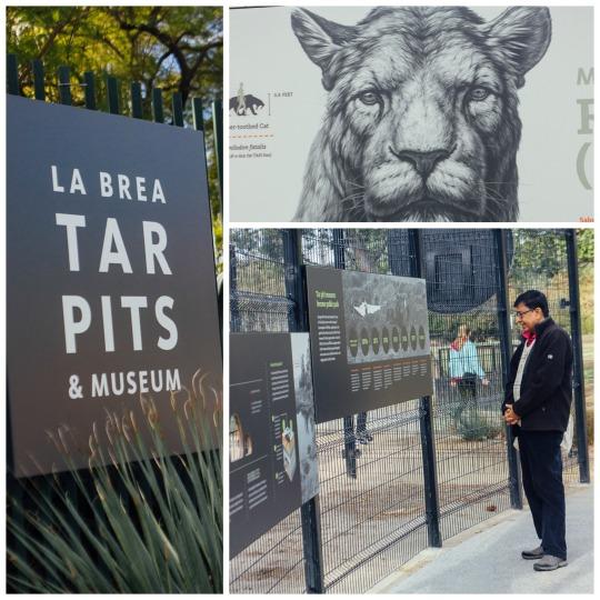 Los Angeles winter travel guide La Brea tar pits