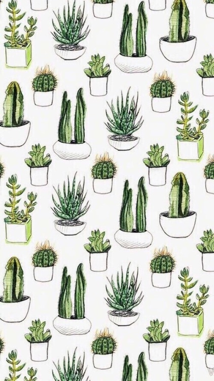 Cactus Plants Vintage Wallpaper Tumblr