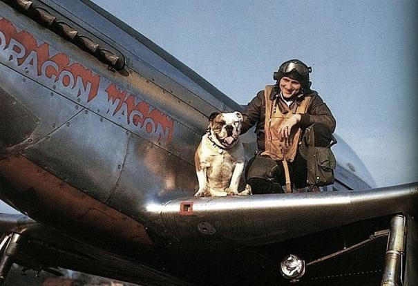 A P-51 pilot with his bulldog, 1940's via reddit – History