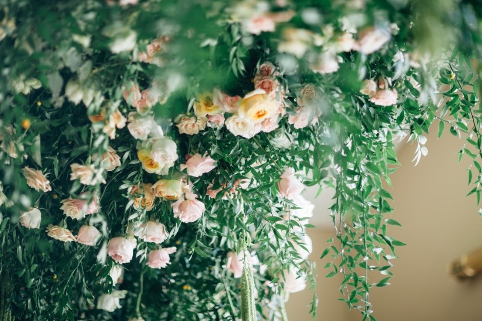 Fresh Flower Ceiling Detail #themischiefmaker #mischiefmakercakes #luxury #luxurywedding #roses #cabbageroses #davidaustin #ruscus #flowerceiling