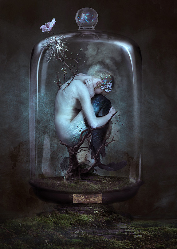 "fantasyartwatch: ""Cabinet of Curiosities Mermaid by Alexandra V Bach """