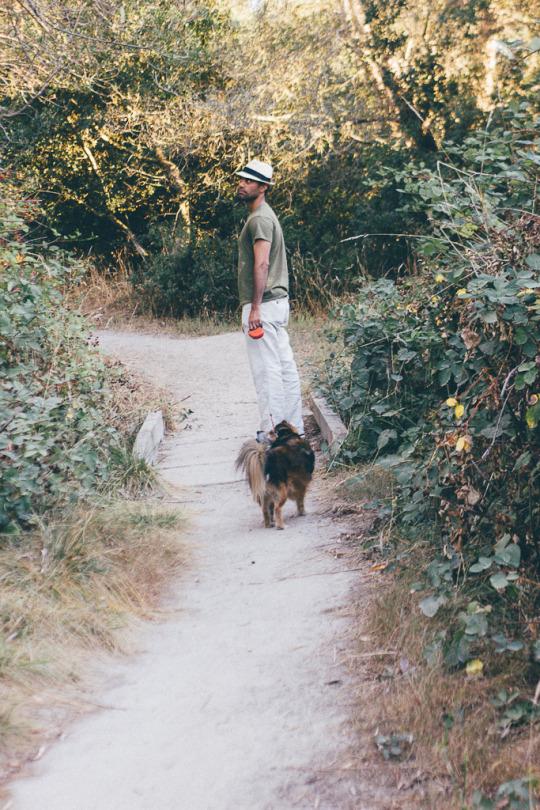 dog friendly hiking in Sebastopol