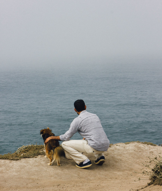 A Guide To Two Of The Best Dog Friendly Road Trips In Northern