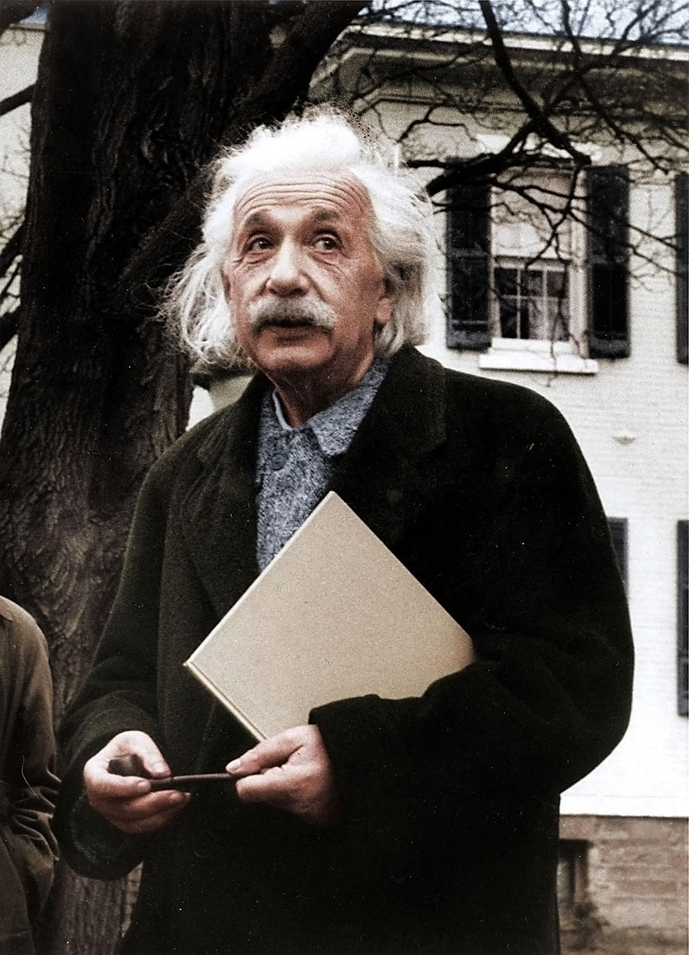 kafkasapartment: