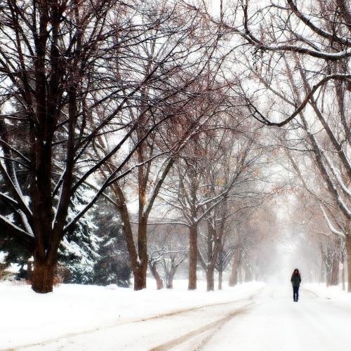 amandaricks.com/snowbalss-and-winter-snow/