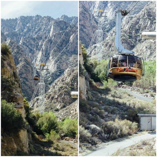 Palm Springs getaway, spring break at Palm Springs, Aerial tramway, things to do in palm springs, romantic getaway to Palm springs