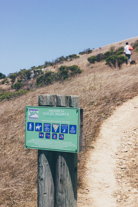 dog friendly hiking Tiburon St. Hilary Open space Preserve, Bay Area hikes with dogs, hiking in Tiburon, dog friendly hikes in Marin