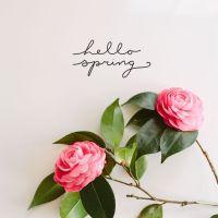 My Springtime Muses 3.10.17