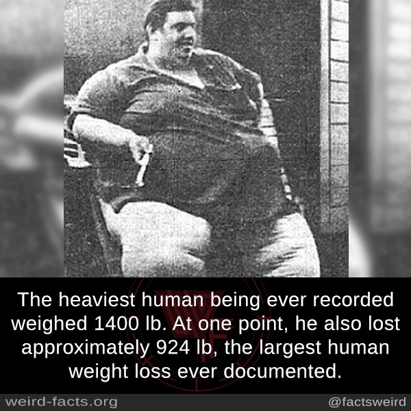 The heaviest human being ever recorded weighed 1400 lb At one